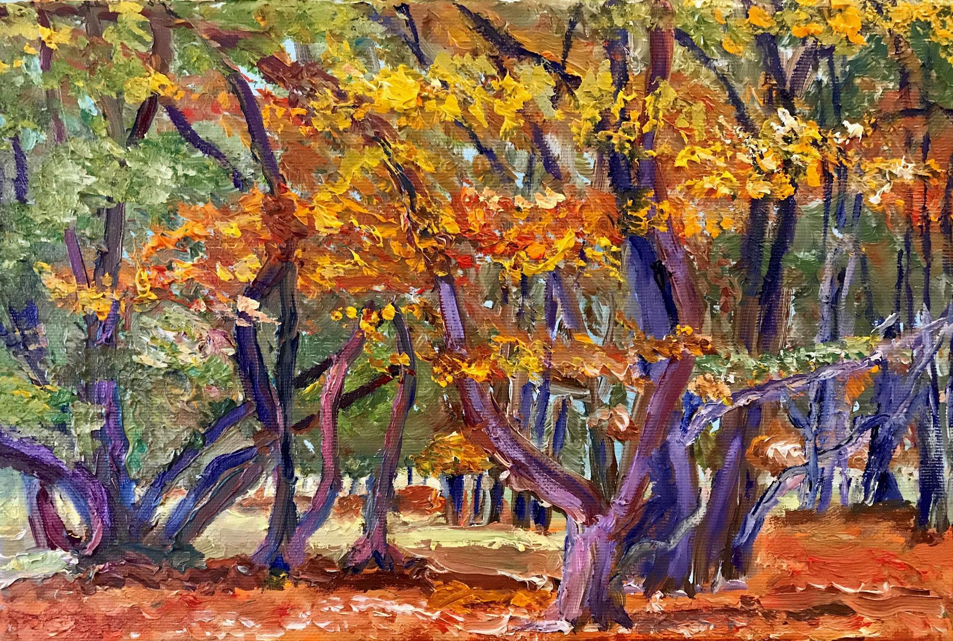 Heumensoord Bomen in de herfst