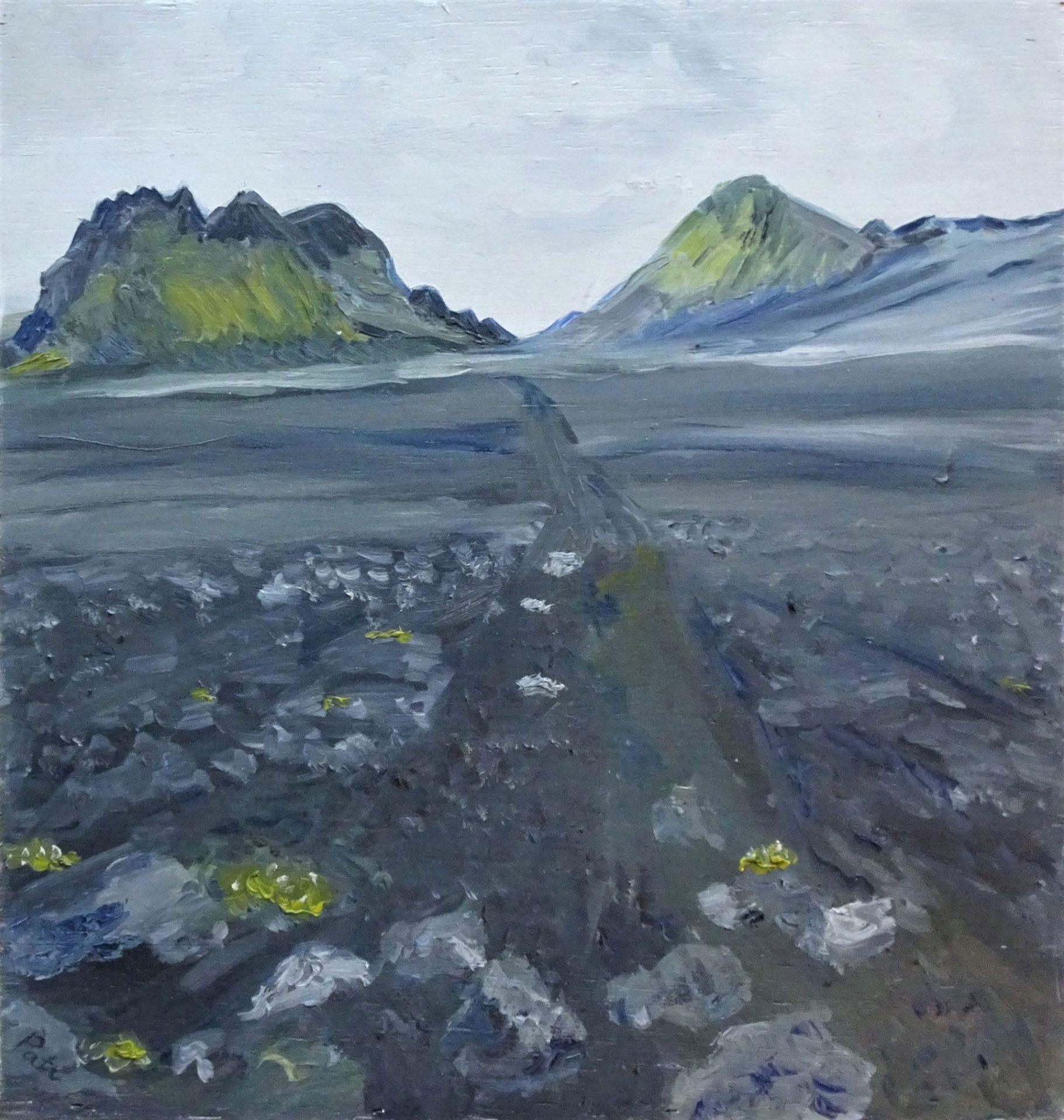 IJsland-Laugavegur
